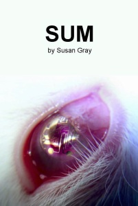 sum-front-cover